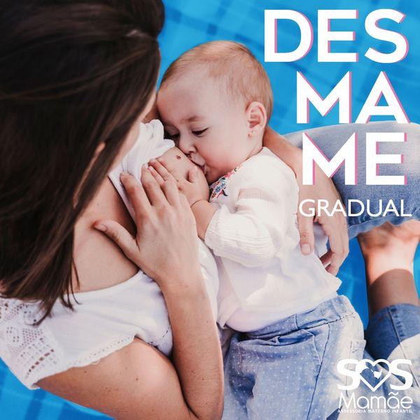 Imagem principal do produto Desmame Gradual - SOS Mamãe