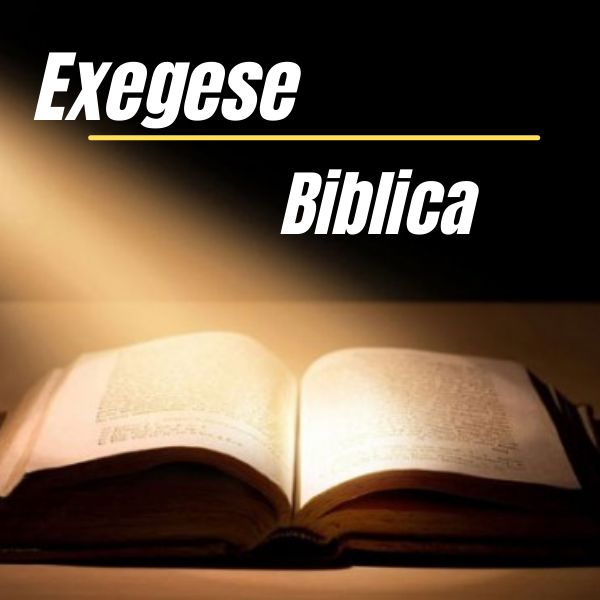 Imagem principal do produto EXEGESE BÍBLICA
