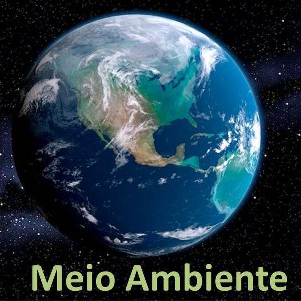 Imagem principal do produto MEIO AMBIENTE-SLIDES PRONTOS PARA SUA AULA