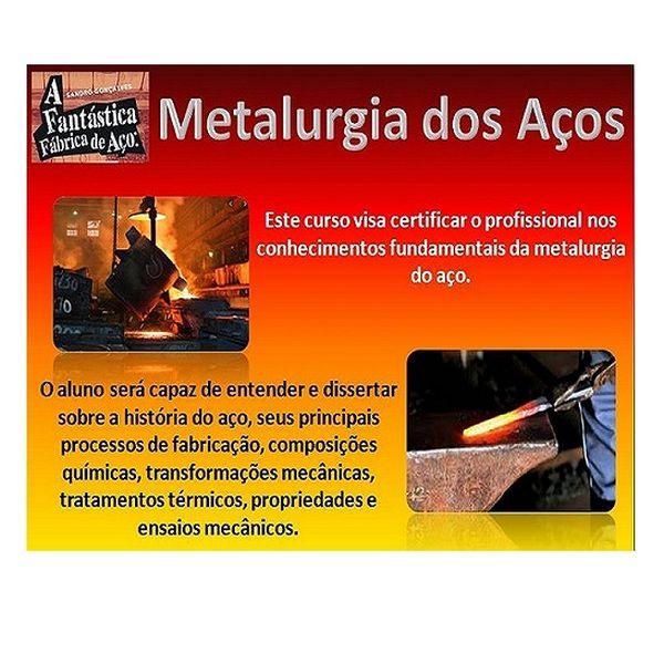 Imagem principal do produto Metalurgia dos Aços