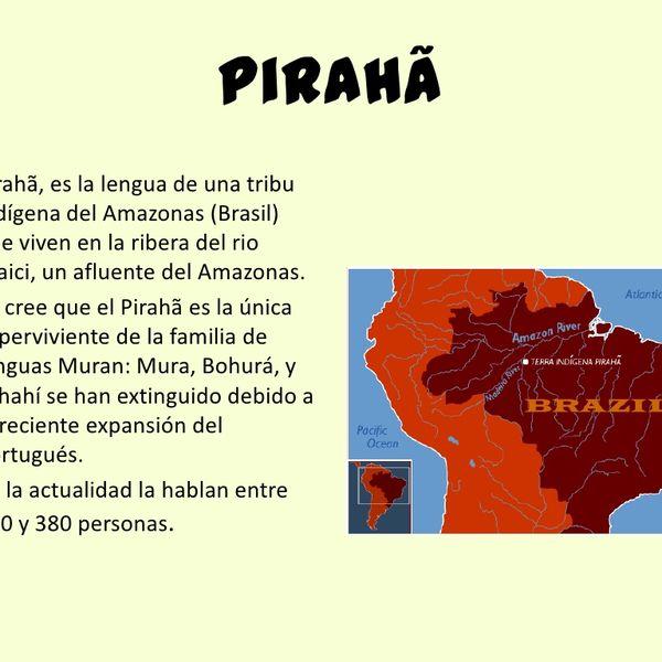 Imagem principal do produto La primera lengua natural del mundo