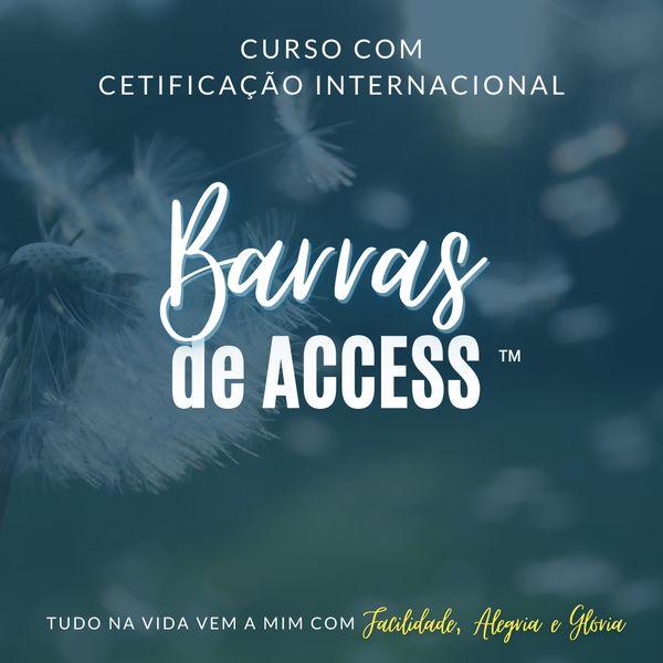 Imagem principal do produto Curso de Barras de Access™