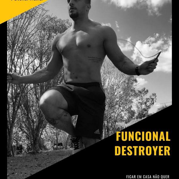 Imagem principal do produto FUNCIONAL DESTROYER