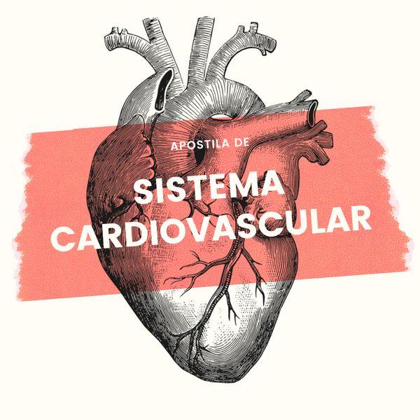 Imagem principal do produto Apostila Sistema Cardiovascular