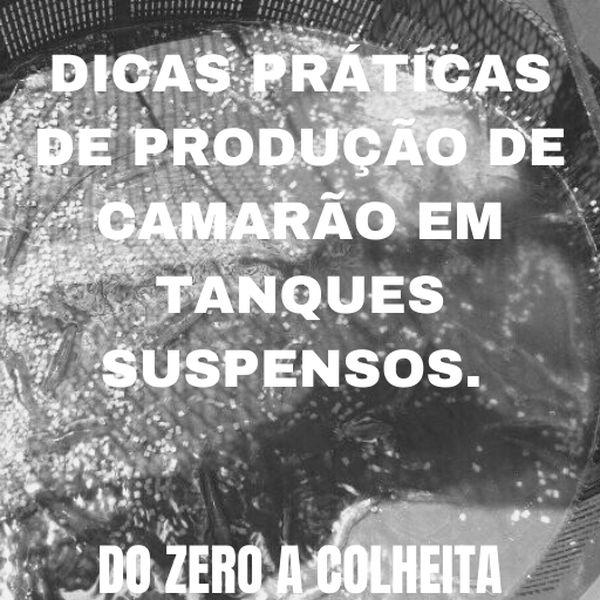 Imagem principal do produto DICAS PRÁTICAS DE PRODUÇÃO DE CAMARÃO EM TANQUES SUSPENSOS DO ZERO A COLHEITA.