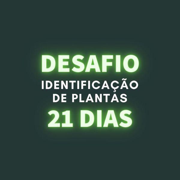 Imagem principal do produto Desafio Identificação de Plantas em 21 Dias