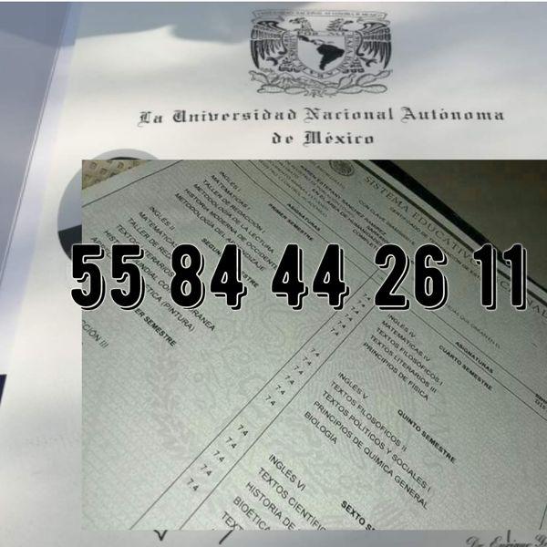 Imagem principal do produto Certificado de preparatoria validez oficial