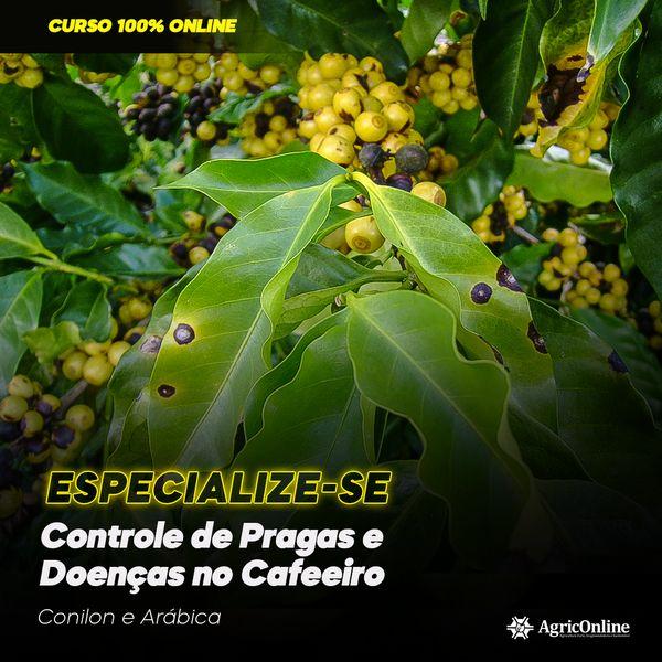 Imagem principal do produto Manejo de pragas e doenças no cafeeiro: conilon e arábica