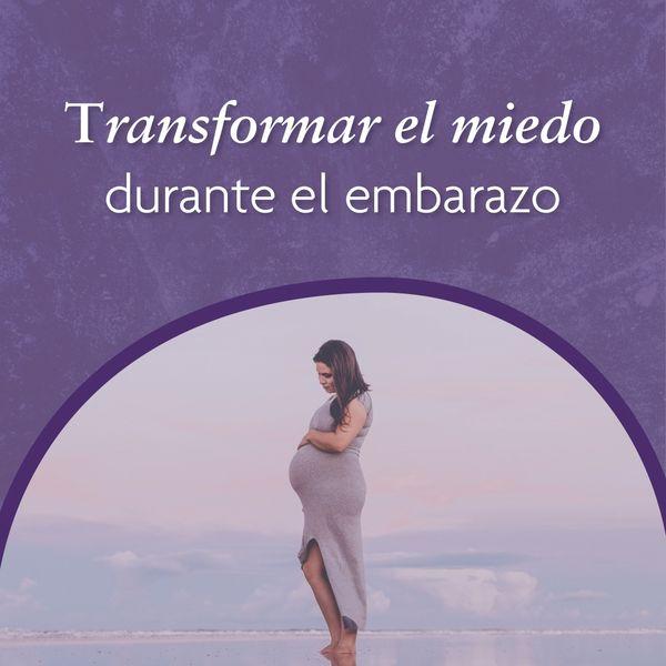 Imagem principal do produto Hipnosis para transformar el miedo durante el embarazo