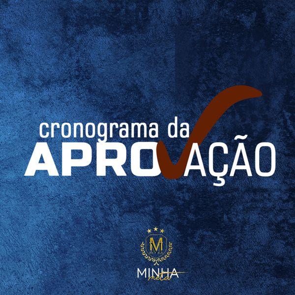 Imagem principal do produto CRONOGRAMA DA APROVAÇÃO - 90 DIAS - 1ª FASE DA OAB