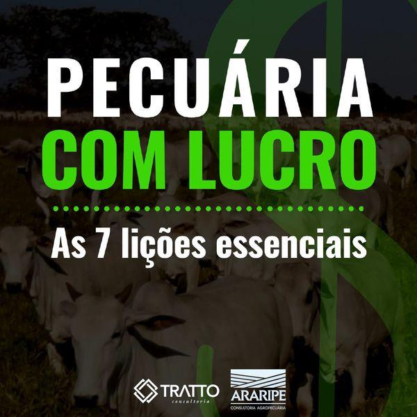 Imagem principal do produto Ebook Pecuária com Lucro