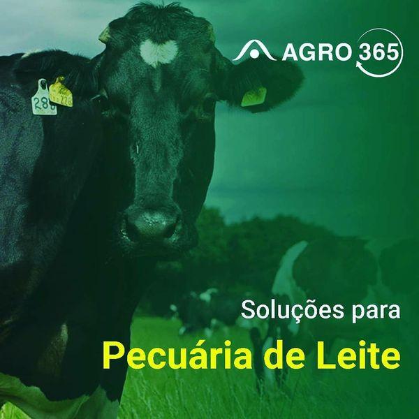 Imagem principal do produto AGRO365 - Pecuária de Leite
