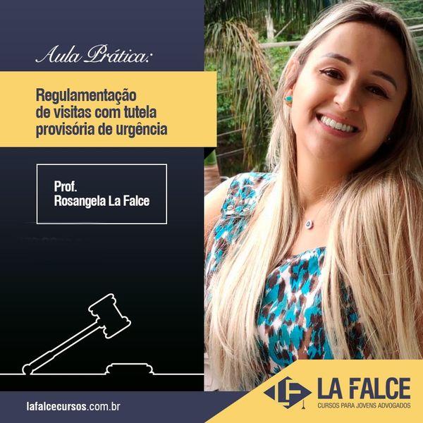 Imagem principal do produto AS ESPÉCIES DE GUARDA DO DIREITO BRASILEIRO (COM DESTAQUE À GUARDA COMPARTILHADA)