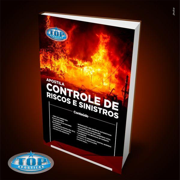Imagem principal do produto Ebook Controle de Riscos e Sinistros