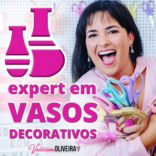 Imagem principal do produto Expert em Vasos Decorados
