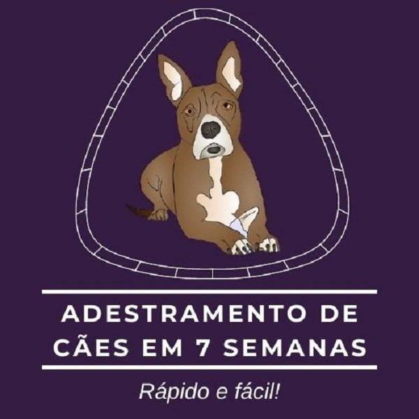 Imagem principal do produto Adestramento de cães em 7 semanas