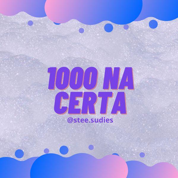 Imagem principal do produto 1000 na certa