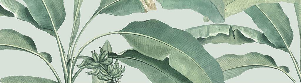Curso Intensivo de Ilustración Botánica