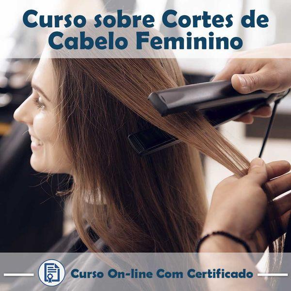 Imagem principal do produto Curso Cortes de Cabelo Feminino