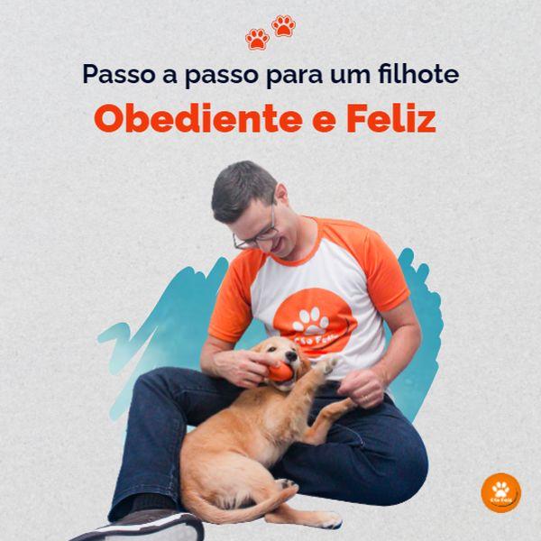 Imagem principal do produto Passo a passo para um filhote obediente e feliz