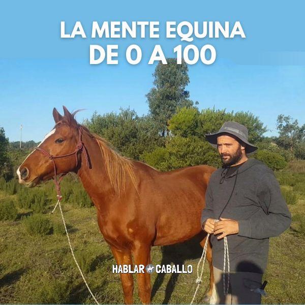 Imagem principal do produto La Mente Equina de 0 a 100