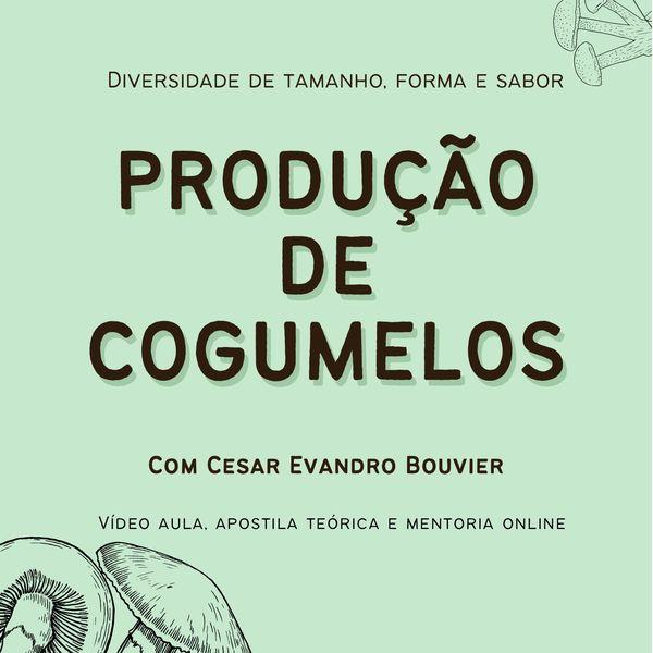 Imagem principal do produto Curso de produção de cogumelos orgânicos