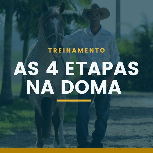 Imagem principal do produto AS 4 ETAPAS FUNDAMENTAIS DA DOMA