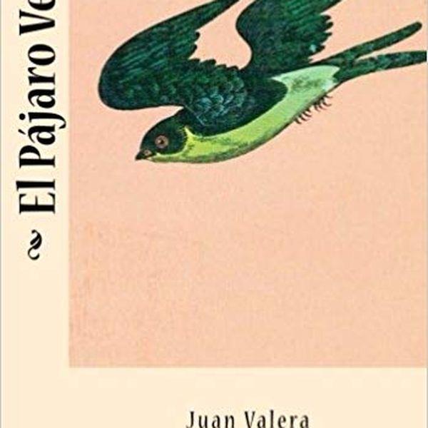 Imagem principal do produto Audiolibro El pájaro verde