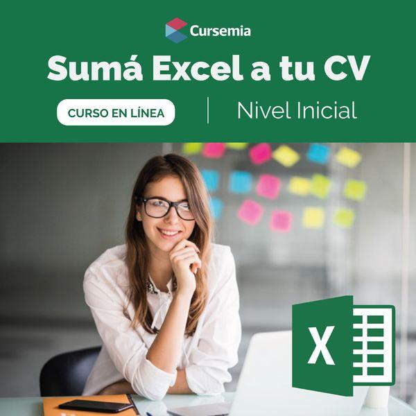 Imagem principal do produto Excel Inicial y Excel Intermedio