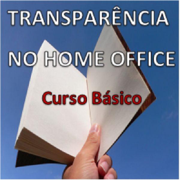 Imagem principal do produto Transparência no Home Office - Curso Básico