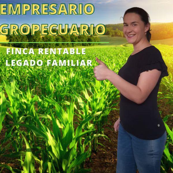 Imagem principal do produto EMPRESARIO AGROPECUARIO
