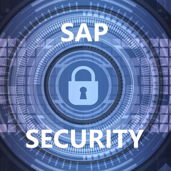 Imagem principal do produto Curso de SAP Security
