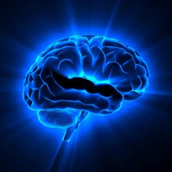 Imagem principal do produto Imersão em Inteligência e Linguagem Corporal