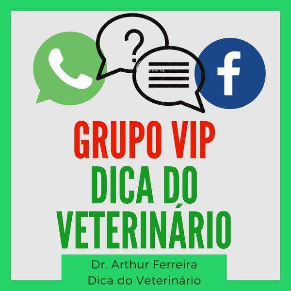 Imagem principal do produto Grupo Vip Dica do Veterinário - Assinatura