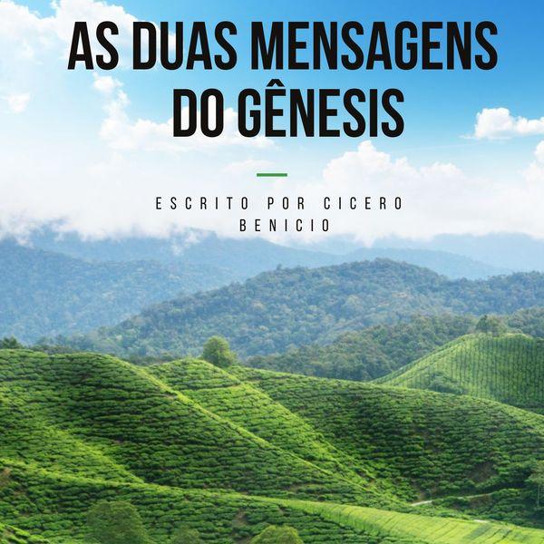 Imagem principal do produto AS DUAS MENSAGENS DO GÊNESIS