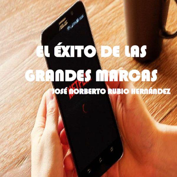 Imagem principal do produto EL ÉXITO DE LAS GRANDES MARCAS
