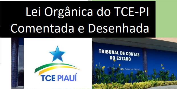 Lei Orgânica do TCE-PI Comentada e Desenhada