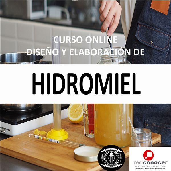 Imagem principal do produto CURSO DISEÑO Y ELABORACIÓN DE HIDROMIEL ARTESANAL