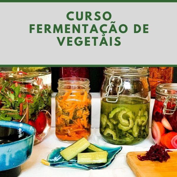 Imagem principal do produto Curso Fermentação de Vegetais