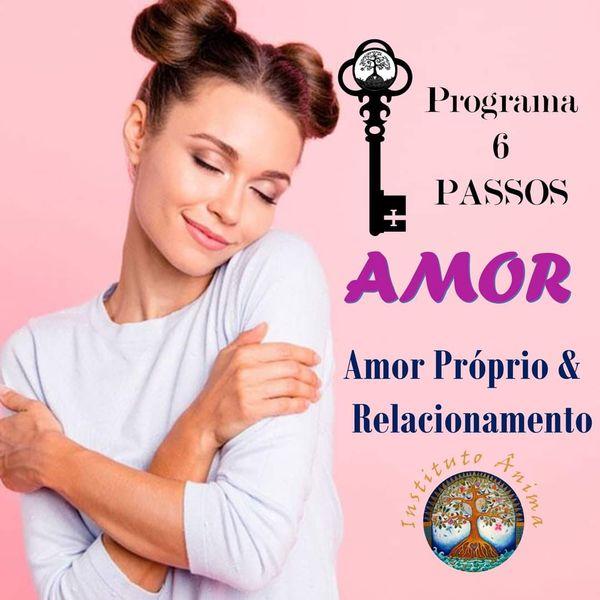Imagem principal do produto 6 PASSOS PARA O AMOR