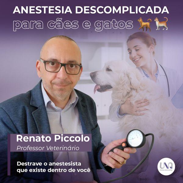 Imagem principal do produto Anestesia Descomplicada