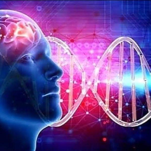 Imagem principal do produto Sintonizando Sua Frequência Vibracional