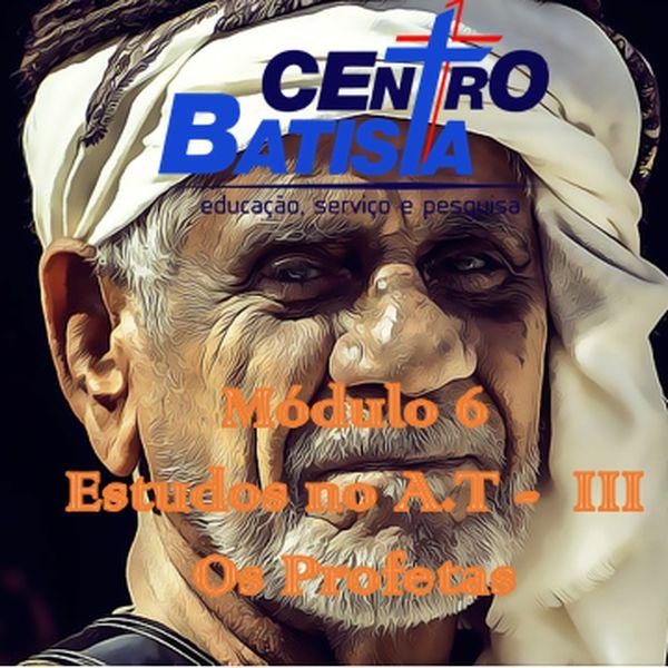 Imagem principal do produto FORMAÇÃO BÍBLICA E MINISTERIAL : MÓDULO 6-ESTUDOS NO ANTIGO TESTAMENTO III - OS PROFETAS