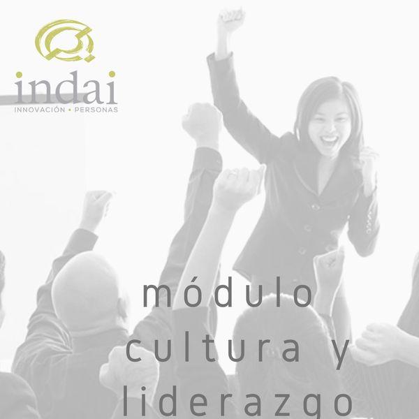 Imagem principal do produto Cultura y liderazgo