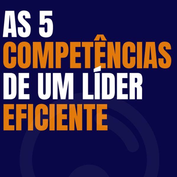 Imagem principal do produto As 5 competências de um líder eficaz