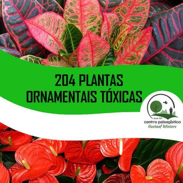 Imagem principal do produto 204 Plantas Ornamentais Tóxicas