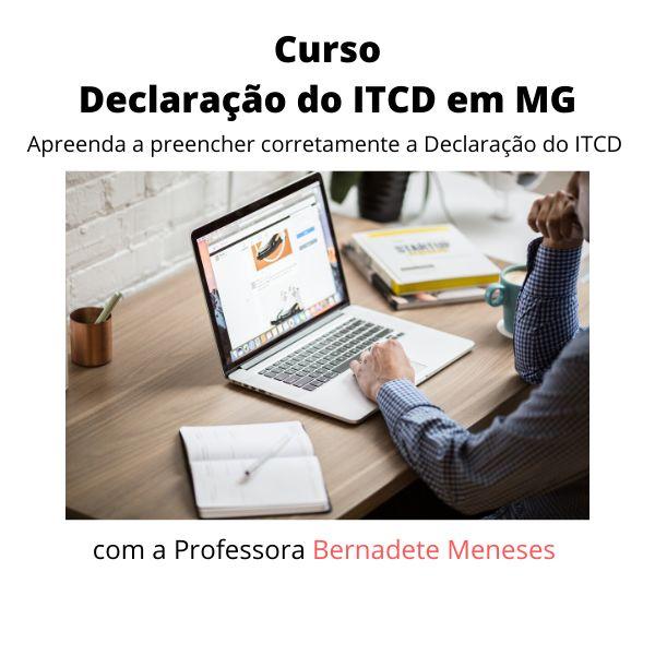 Imagem principal do produto Aprenda a preencher a Declaração do ITCD em Minas Gerais