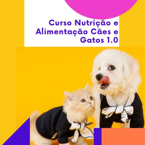 Imagem principal do produto Curso Nutrição e Alimentação Cães e Gatos 1.0