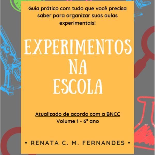 Imagem principal do produto EXPERIMENTOS NA ESCOLA VOL. 1