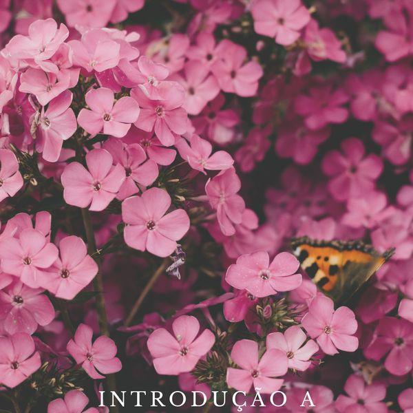 Imagem principal do produto Introdução a Aromaterapia